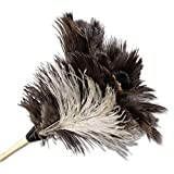 BWK13FD - Boardwalk Professional Ostrich Feather Duster