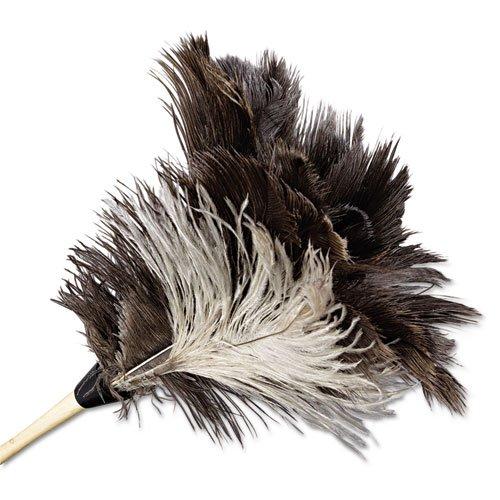 BWK13FD - Boardwalk Professional Ostrich Feather Duster
