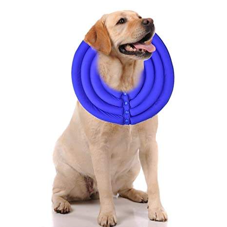 Hellohouse - Cuello de recuperación para Mascota, antiácaros, Antiadherente, para Perro o Gato, Cubierta de Belleza: Amazon.es: Productos para mascotas