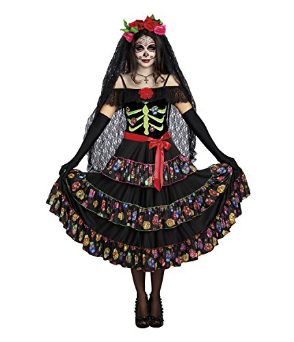 Halloween Costumes Day Of The Dead - Dreamgirl Women's Plus Size Lady of the Dead, Multi, 2X