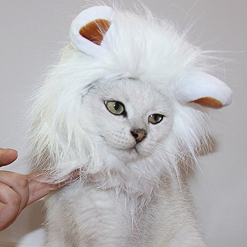 Cat Lion Costumes (CPPSLEE Lion Mane Wig Costume for Cat (White))