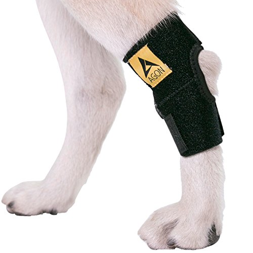 Agon Dog Canine Rear Hock Joint Brace Compression Wrap with Straps Dog for Back Leg Protects Wounds. Heals Prevents Injuries and Sprains Helps with Loss of Stability Caused by Arthritis (Large)