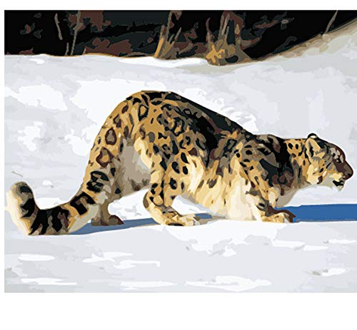 ADVLOOK Leopard DIY Pintura por Números Kit Pintura Acrílica Pintada A Mano Moderna Imagen De Arte De Pared para El Regalo De La Decoración Casera Frameless 40X50Cm