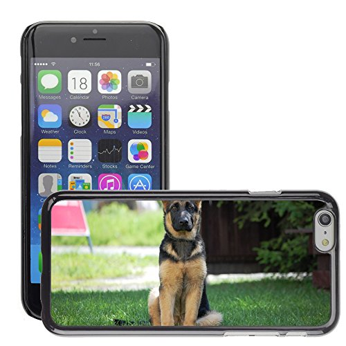 """Bild Hart Handy Schwarz Schutz Case Cover Schale Etui // M00133994 Deutsch Schäferhund elsässischen // Apple iPhone 6 PLUS 5.5"""""""