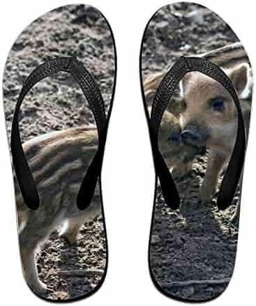 574a89a587c2 LISPLA Coloranimal Men s V Thong Flip Flops Wronged Dog Printed Summer  Beach Sandals