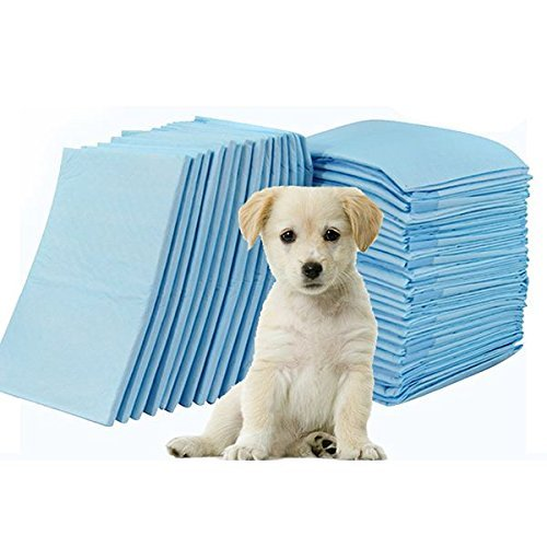 Disposable Puppy Pet Pads Dog Cat Wee Pee Piddle Pad Pet Diaper Training Healthy Clean Wet Mat, Super Absorbent Convenient One-time Pet Urinal Pad (S 3345cm 100 - Match Meter Cb