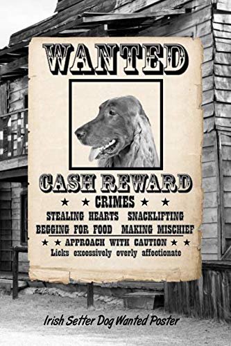Irish Setter Dog Wanted Poster: Beer Tasting Journal Rate and Record Your Favorite Beers Collect Beer Name, Brewer, Origin, Date, Sampled, Rating, ... meter, Note and Flavor wheel 120 pages ()