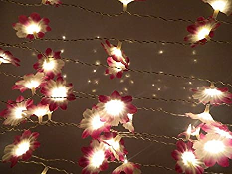 Tucasa DW-225-11 Daffodil Flower String Light (Multicolor) Specialty Lighting at amazon