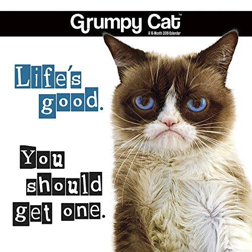 2019 Grumpy Cat Mini Calendar