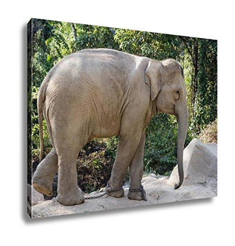 Ashley Canvas, Elephant, Home Decoration Office, Ready to Hang, 20x25, AG5257090 by Ashley Canvas