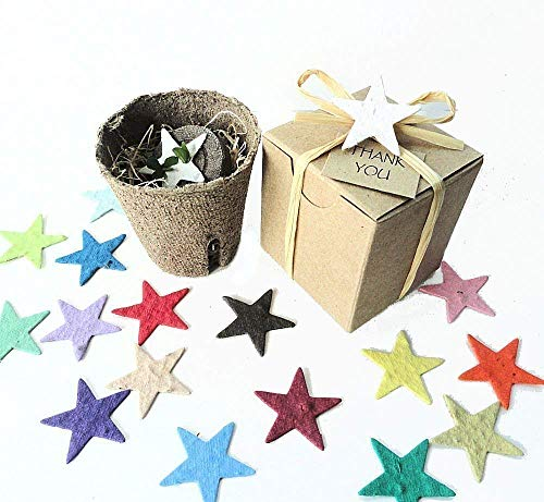 - Plantable Seed Paper Star Garden Kit Party Favors (Set of 12)