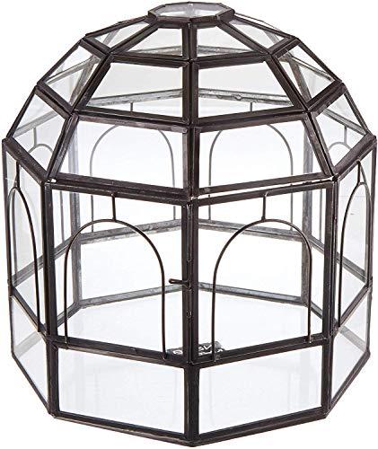 Urban Born Glass Terrarium Birdcage 9x9x10 Urban Black Steel Large