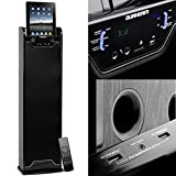 DURHERM Bluetooth Wireless Tower Floor Standing Home Audio Speaker FM SD USB RCA Aux Karaoke Dual Charging Dock for Iphone Ipad Tablet Andoid Galaxy