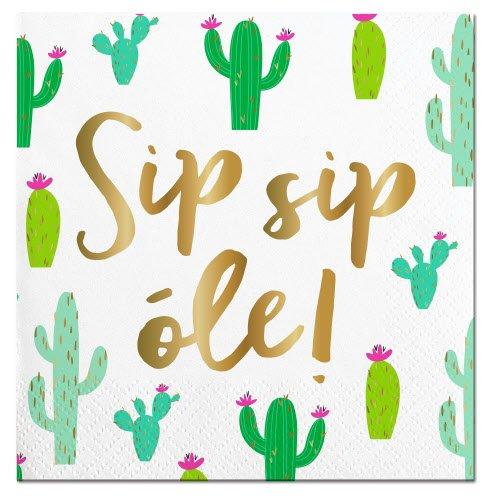 Slant Sip Sip Ole' Cactus Paper Beverage Napkins (20 ct)