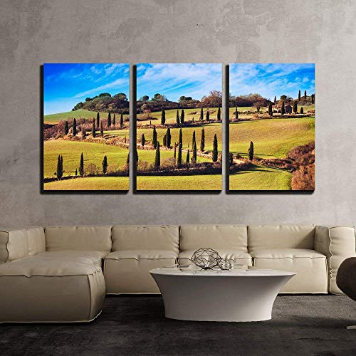 (3 Piece Canvas Wall Art Poster Art Pictures Print Painting - Cypress Trees Scenic Road. Siena, Tuscany, Italy. - Modern Home Decor Stretched and Framed Ready to Hang - 16