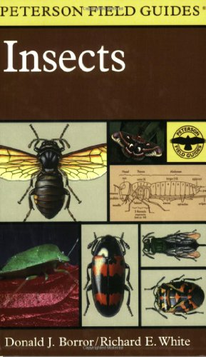 A Field Guide to Insects - Book #19 of the Peterson Field Guides
