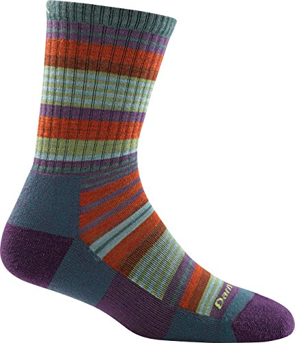 Darn Tough Sierra Stripe Micro Crew Light Cushion Sock - Kid's Teal Medium - Kid Merino Yarn