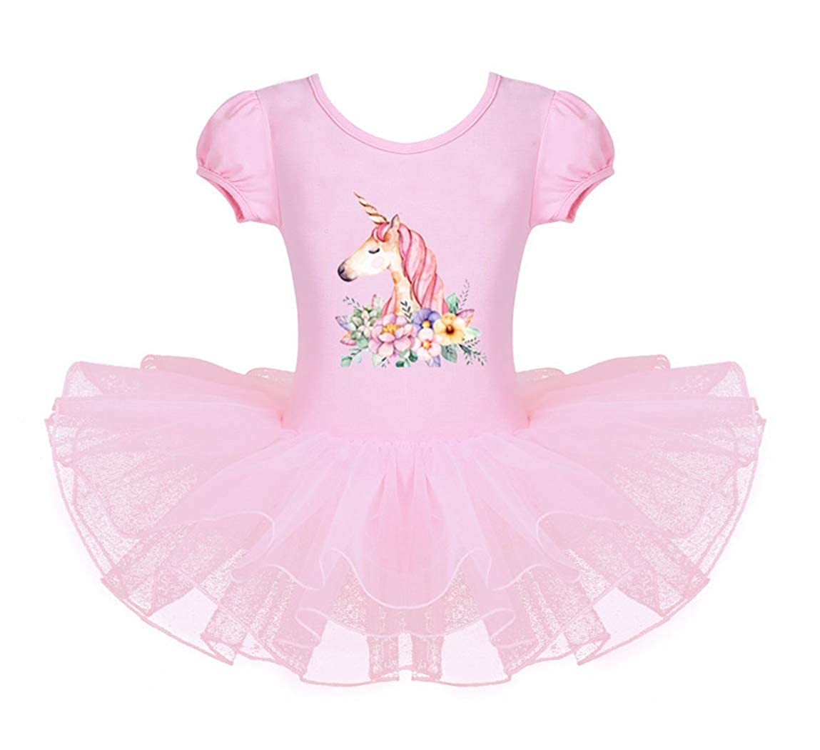 AmzBarley Girls Unicorn Ballet Leotard Dress with Tutu Skirt Ballerina Kids Gymnastics Leotards Short Sleeve Cotton Dresses Child Unicorns Dance Outfit Clothing