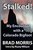 Stalked! My Encounter with a Colorado Bigfoot