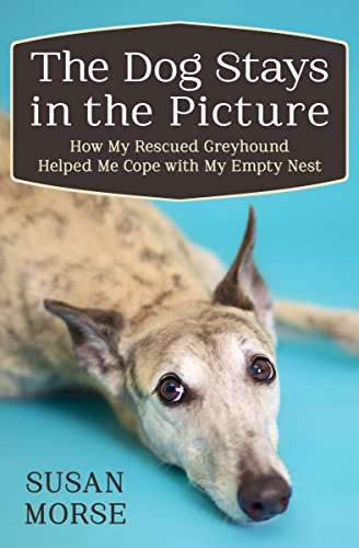 The dog stays in the picture how my rescued greyhound helped me the dog stays in the picture how my rescued greyhound helped me cope with my fandeluxe