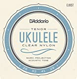 D'Addario EJ65T Pro-Arté Custom Extruded Nylon Ukulele Strings, Tenor