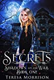 Shadows on the Wall: Book One:  Secrets