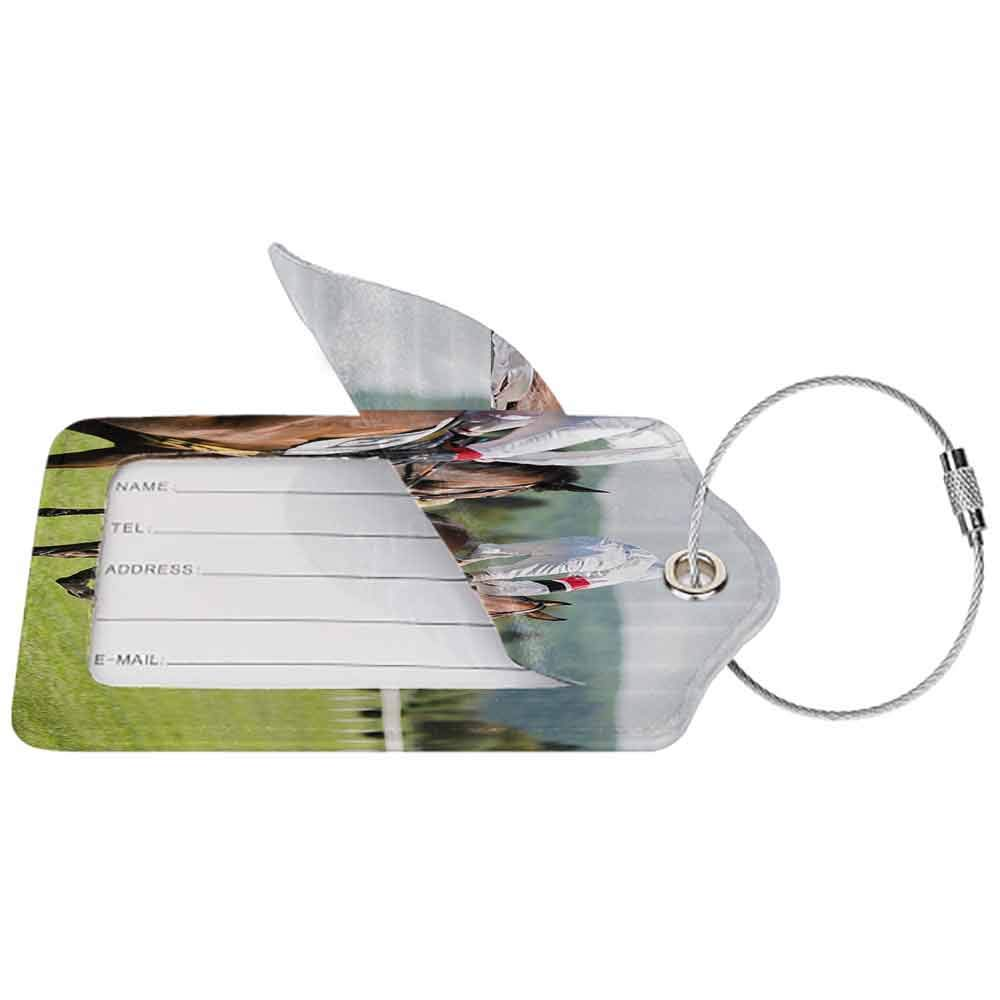 Multicolor luggage tag Modern Equestrian Performance Sport Horse Racing Galloping Jockeys Hobby Activity Picture Hanging on the suitcase Multicolor W2.7 x L4.6