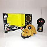 Allytech(TM) Funny Remote Control RC Wireless Rat Mouse Toy for Cat Dog Pet Novelty Gift (Brown)