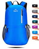 Venture Pal 25L Travel Backpack - Durable Packable Lightweight Small Backpack Women Men (Blue)