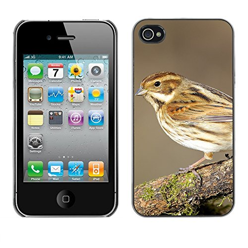 Premio Sottile Slim Cassa Custodia Case Cover Shell // F00018372 Jardin oiseau // Apple iPhone 4 4S 4G