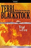 Trial by Fire (Newpointe 911 S.)