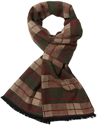 SSLR Men's Colorful Cashmere Feel Soft Winter Long Striped Scarf (One size, Brown Red)