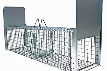 Zielonalapka Strong Super Fuerte Trampa tamaño 130 x 34 x 34 cm Trampa para martas Gato Zorro Animales Alambre Perros tejones nutrias con Extra Cebo: ...