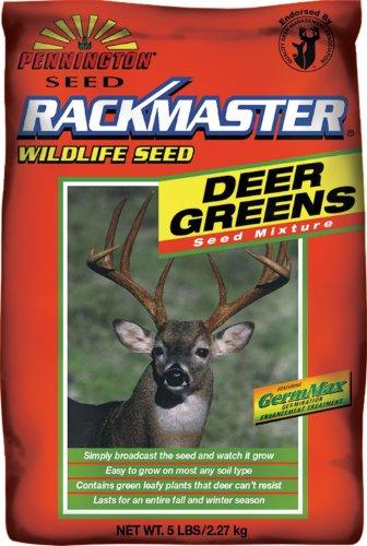 Pennington Rackmaster Deer Greens Mixture 5 Lb