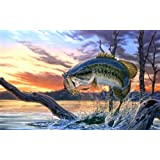 CAKEUSA Bass Fishing Fathers Day Fishing Birthday Cake Topper Edible Image 1/4 Sheet Frosting