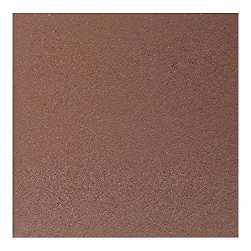 8 Inch Floor Tile - Quarry Diablo Red 8 in. x 8 in. Abrasive Ceramic Floor and Wall Tile (11.11 sq. ft. / case)