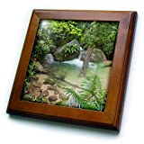 Danita Delimont - Waterfall - Mossman Gorge Daintree National Park North Queensland Australia - 8x8 Framed Tile (ft_226228_1)