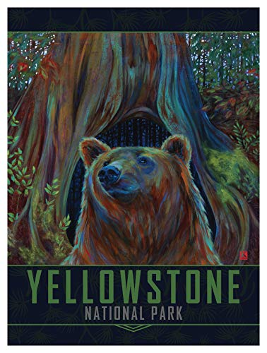 - Yellowstone National Park Brown Bear Giclee Art Print Poster by Kari Lehr (9