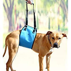 Large Lift Support Harness By AMZpets. Lifting Slings for Dogs with Weak Front or Back Legs. Pet Lifter is Recommended by Veterinarians for Pain Relief, Rehabilitation, Surgeries, Handicapped Canines