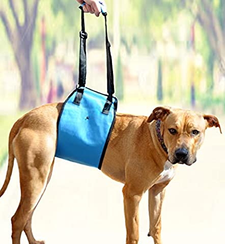 Dog Lift Support Sling by AMZpets - Medium. Helps Old or Injured Pets Stand Up, Walk, Climb Stairs, Hop into Cars. Best Alternative to Dog Wheelchair. Lifting harness is RECOMMENDED BY - Free Lift Chairs