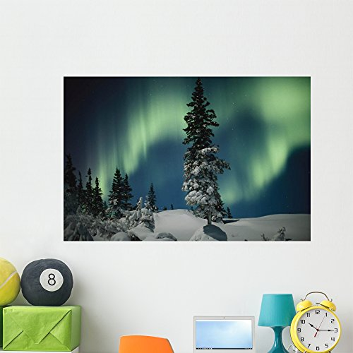 Wallmonkeys NGO-24725-48 WM335689 Snow Blanketed Evergreen Trees and The Aurora Borealis at Night Peel and Stick Wall Decals (48 in W x 32 in H), Extra Large