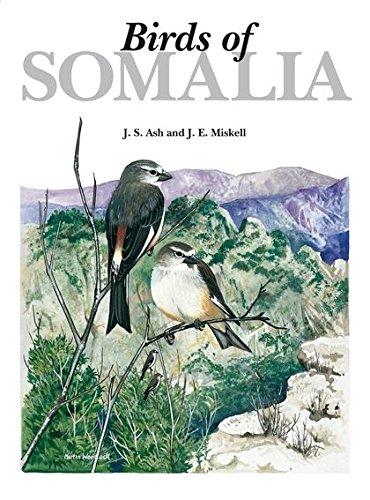 Birds of Somalia ebook