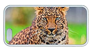 Cute iphone 5 original covers Leopard face HD close up TPU White for Apple iPhone 5/5S