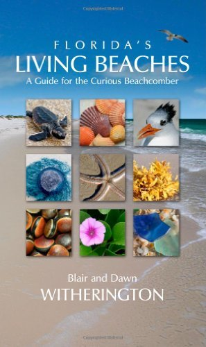Florida's Living Beaches: A Guide for the Curious Beachcomber by Blair Witherington (2007-05-01)