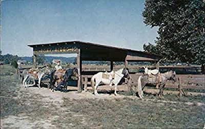 Pony Riding Ring General Butler State Park Carrollton, Kentucky Original Vintage Postcard