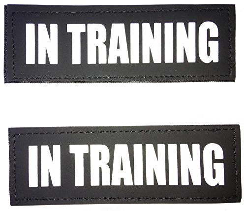 Albcorp Reflective In Training Patches with Hook Backing for Service Animal Vests /Harnesses Large (6 X 2) Inch