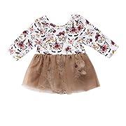 Newborn Baby Girls Unicorn Floral Romper Tutu Dress Outfit Clothing (Light Brown, 0-6M)