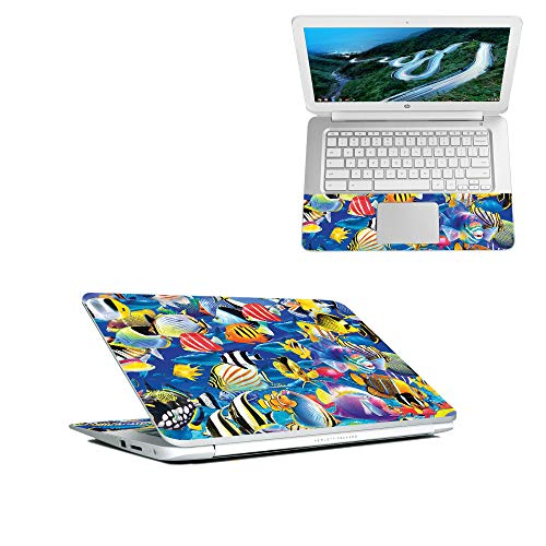 - MightySkins Skin Compatible with HP Chromebook 14