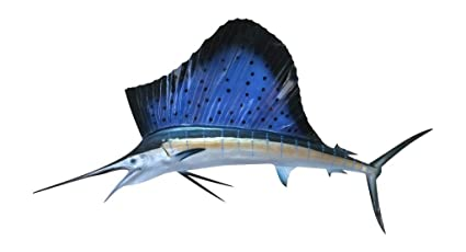 amazon com 58 sailfish half sided fish mount replica affordable