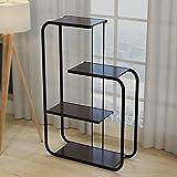 Simple frame creative storage shelves partition flower rack multi - layer creative flower racks ( Color : Black )